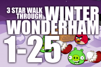 winter_wonderham_1-25